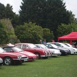 Motors on the Wold - A line up of classic cars